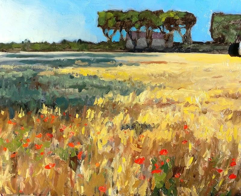 Wheat Field Near Roujan